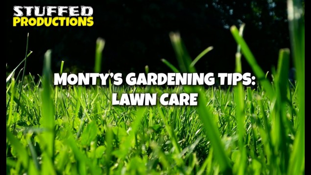 How To Look After Your Lawn With Monty! – Gardeners World 2020 YouTube